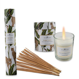 Home Decor - Set of 2 - Scented Wax Glass Candles and Incense Stick Box with 30 Sticks (Fragrance -