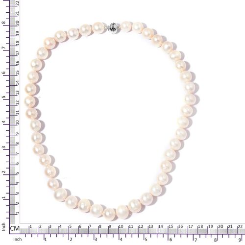 Limited Available Triple High Lustre 14K White Gold AAA Freshwater White Pearl Necklace with Magnetic Lock (Size 20)