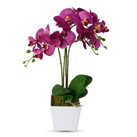 Home Decor Artificial Dark Purple Butterfly Orchid Plant with Pot  (Size:50.5x12.5x12.5 Cm))
