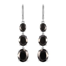 Elite Shungite (Ovl) Lever Back Earrings in Platinum Overlay Sterling Silver 10.250 Ct.