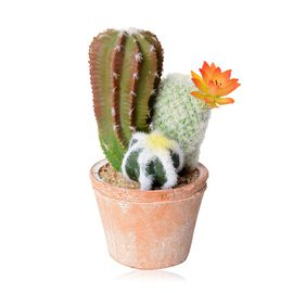 Home Decor - Artificial Cactus with Flower Pot (Size 21x11 Cm)