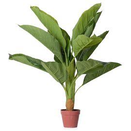 Artificial Dieffenbachia Plant with Pot - 60 Cm