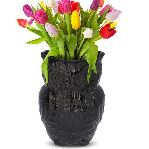Owl Design Ceramic Multipurpose Holder (Size 19x9cm) - Black