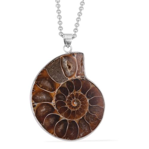 Extremely Rare Ammonite Fossil Spiral Pendant With Chain (Size 24) in Stainless Steel 75.000 Ct.