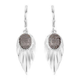 Tucson Special - Meteorite (Ovl) Dangle Earrings in Platinum Overlay Sterling Silver 9.00 Ct.