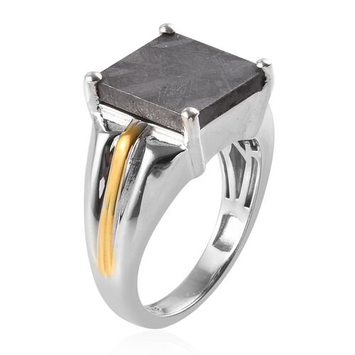 Tucson Special - Meteorite (Sqr 12mm) Ring in Platinum and Yellow Gold Overlay Sterling Silver 2.56 Ct, Silver wt 7.60 Gms