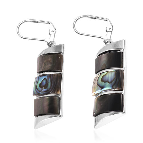 Abalone Shell and Brown Shell Earrings in Stainless Steel