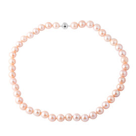 9K White Gold AA Freshwater Pink Pearl (Rnd 10-12 mm) Necklace (Size 20)