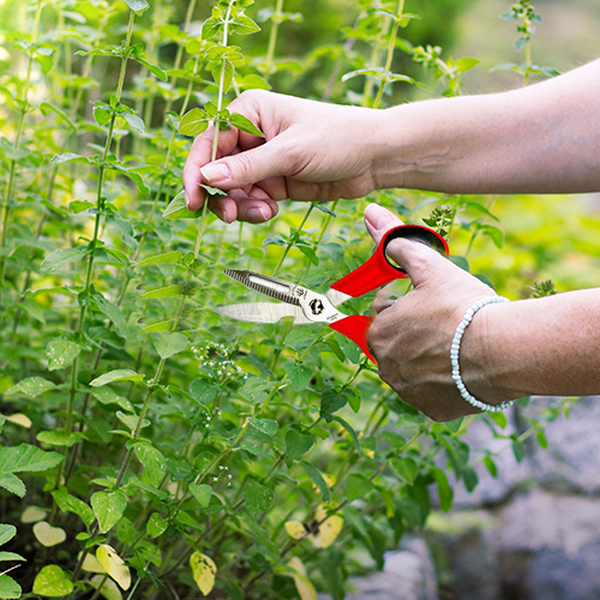 Jardin de France Multi-Function Scissors (L: 20cm)