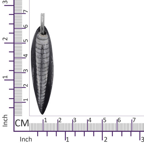 One Time Mega Deal-Orthoceras Fossil Pendant in Sterling Silver 70.420 Ct.