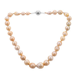 Limited Available: South Sea Golden Pearl Necklace (Size 20)