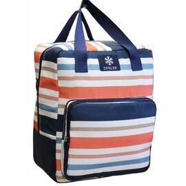 Cooler Back Pack Bag Multi Colour Stripe Pattern (Size 34x27x17 cm)