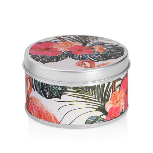 Home Sense - Set of 3 Scented Candles in Flamingo Gift Box, Peach and Cream Scent