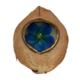Plumeria Candle in Coconut Shell Blue Colour With Lavender Scent (Size 12x16x6 Cm)