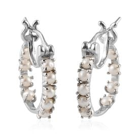 Freshwater Pearl Hoop Earrings with Clasp in Platinum Plated