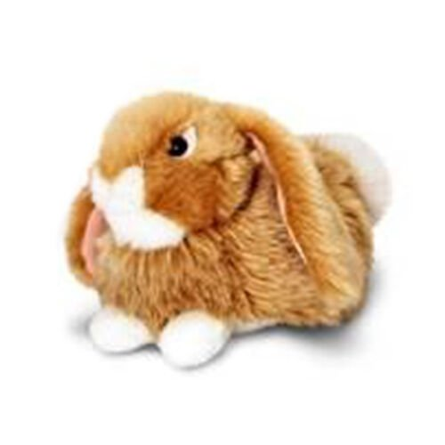 Brown Colour Laying Rabbit (Size 18 Cm)
