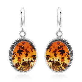 LIVE from Tucson- Bi- Colour Champagne Baltic Amber (Ovl) Lever Back Earrings in Sterling Silver