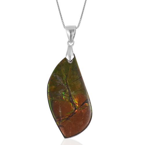 Extremely Rare Size - Canadian Ammolite Pendant with Chain in Rhodium Plated Sterling Silver 20.590