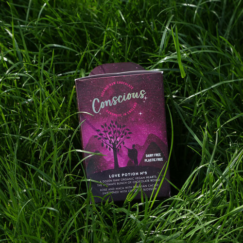 The Raw Chocolate Company Love Potion Organic Raw Chocolate Hearts Gift Box. 180 grams