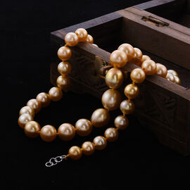 RHAPSODY 950 Platinum AAAA Golden South Sea Pearl (Rnd 8-15mm) Necklace (Size 20)