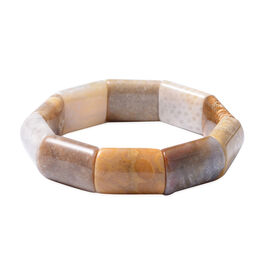 Chunky Fossil Coral Bracelet (Size 6.5) 225.00 Ct.