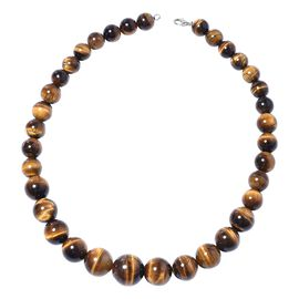 One Time Deal- AAA Tiger Eye (Rnd 12 - 21 mm) Graduated Necklace (Size 20) in Rhodium Overlay Sterling Silver  723.500 Ct.