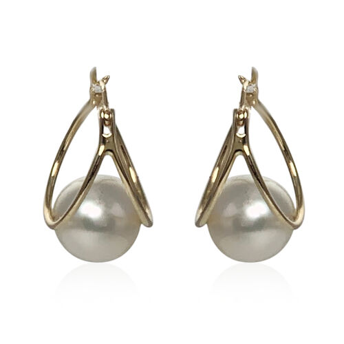 Close Out Deal- 14K Yellow Gold White South Sea Pearl Earrings (with Clasp)