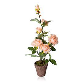 Home Decor Artificial Cream Colour Rose with Pot  (Size:11.5x11.5x63cm)