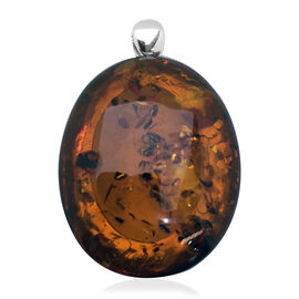 Limited Available - Extremely Rare Size Baltic Amber (Ovl 42x34mm) Pendant in Sterling Silver 70.00 Ct.