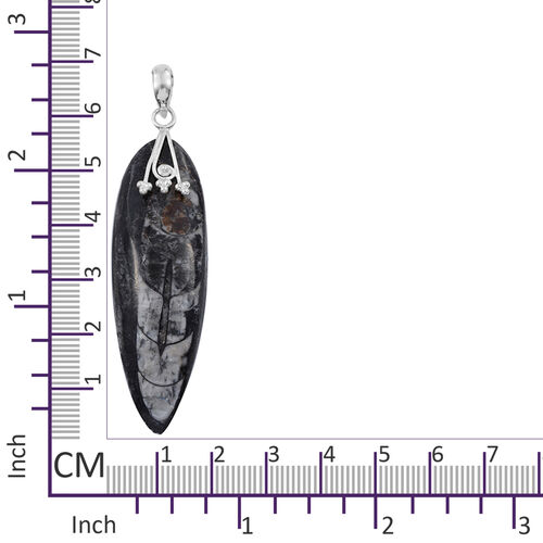 Tucson Collection- Orthoceras Fossil Pendant in Sterling Silver 63.260 Ct.