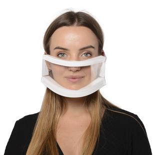 Transparent Protective Sponge Face Cover (Size 22x11 Cm)