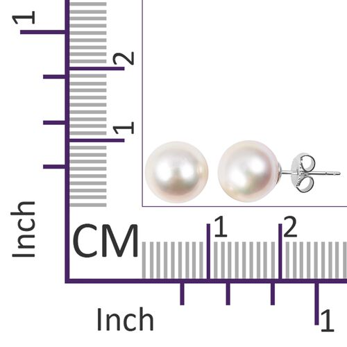 9K White Gold White South Sea Pearl (Rnd 9 - 10 mm)  Stud Earrings (with Push Back)