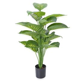 Home Decor - 65cm Artificial Rohdea Japonica Plant with Pot