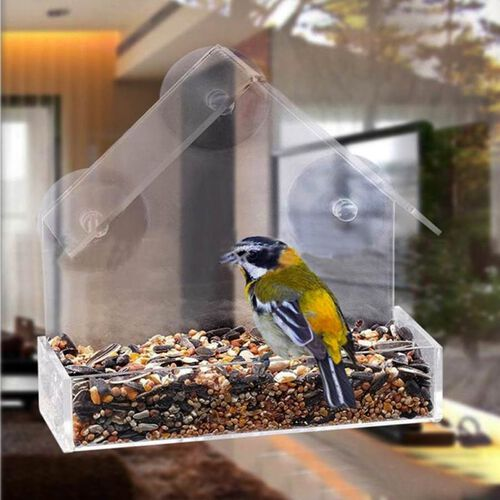 Transparent Acrylic Bird Feeder with Fixed Tray and 3 Suction Cups