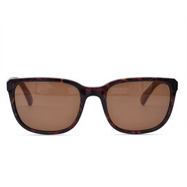TIMBERLAND Tortoise Wayfarer Sunglasses with Brown Lenses
