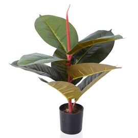 Home Decor - 45 cm Artificial Rubber Plant with Pot