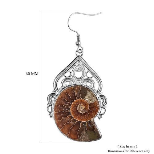 Ammonite Dangle Hook Earrings in Silver Tone 50.00 Ct.
