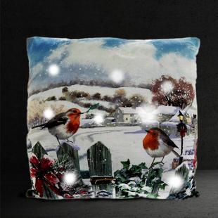 Lesser & Pavey Christmas Robin LED Cushion (Size:40x40x12Cm) - Multi