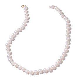 ILIANA 18K Yellow Gold AAAA Fresh Water White Pearl Ball Necklace (Size 20)
