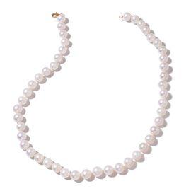 ILIANA 18K Yellow Gold AAAA Fresh Water White Pearl Ball Necklace (Size 20)
