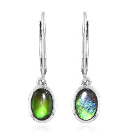 AA Canadian Ammolite (Ovl 7x5 mm) Lever Back Earrings in Platinum Overlay Sterling Silver.