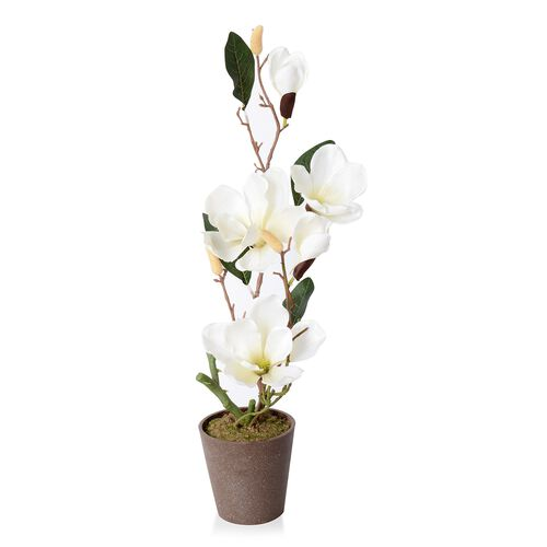 Home Decor Artificial Magnolia Denudata Cream Colour Flower with Pot (Size 53x11.5x10.5 Cm)