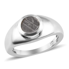 Tucson Special - Meteorite (Rnd) Ring in Platinum Overlay Sterling Silver