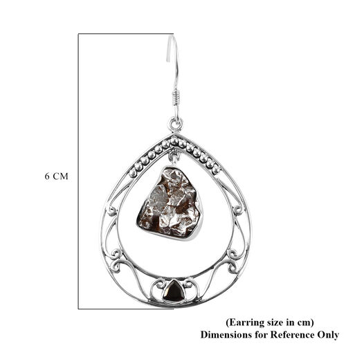Artisan Crafted : Meteorite and Shungite Hook Earrings in Sterling Silver 30.00 Ct, Silver wt. 8.89 Gms