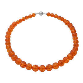 AAAA Grade Natural Certified Baltic Amber Necklace (Size - 18) in Rhodium Overlay Sterling Silver wi