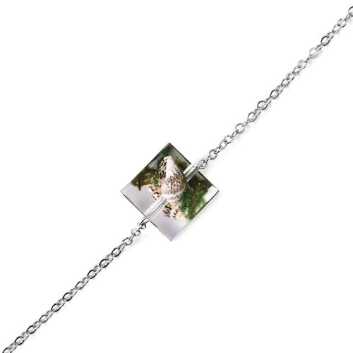 Dried Shell Square Necklace (Size 21 with 2 inch Extender) in Silver Tone
