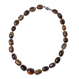 Tigers Eye Bead Necklace (Size 20) with Magnetic Lock 350.00 Ct.