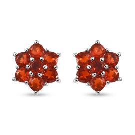 RHAPSODY 950 Platinum Jalisco Fire Opal Floral Stud Earrings (with Screw Back)