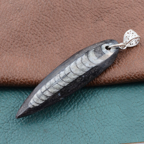One Time Mega Deal-Orthoceras Fossil Pendant in Sterling Silver 78.910 Ct.