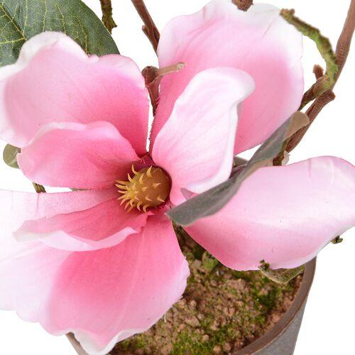 Home Decor Artificial Magnolia Denudata Dark Pink Colour Flower with Pot (Size 53x11.5x10.5 Cm)